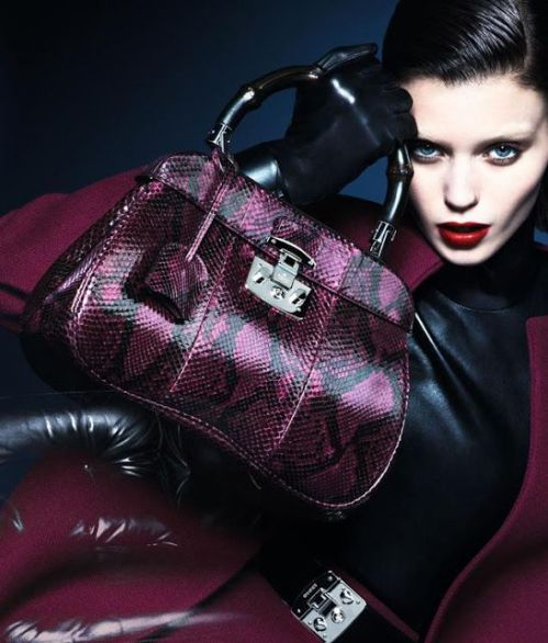 Gucci Ad Campaign Fall 2013