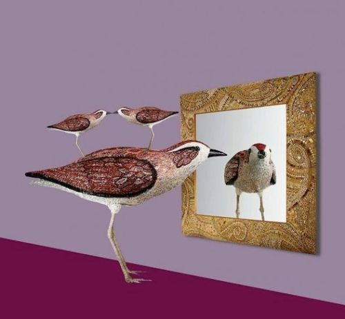 "Dusciana Bravura "" Birds and Mirrors"""