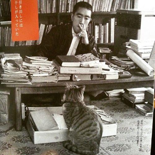 regram from mardou_ Yukio Mishima and his cat